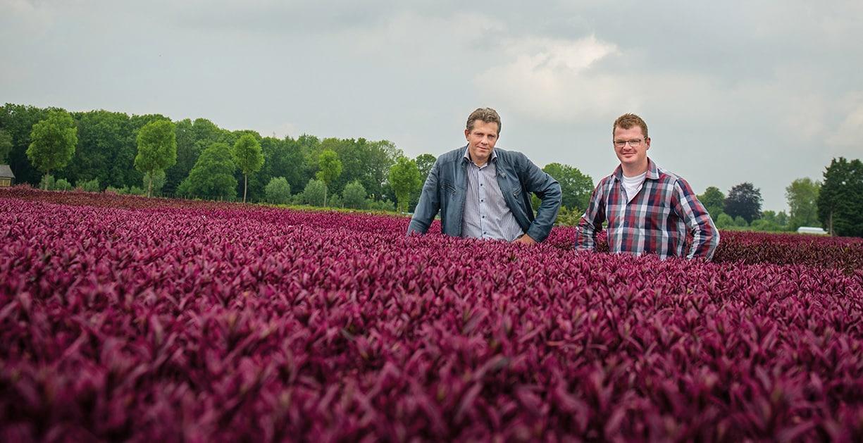 Sterkste Schakel genomineerde: Vitelia Agrocultuur